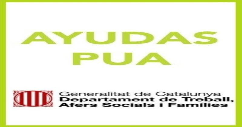 PRESTACIÓN DE ATENCIÓN SOCIAL A PERSONAS CON DISCAPACIDAD (PUA) 2020
